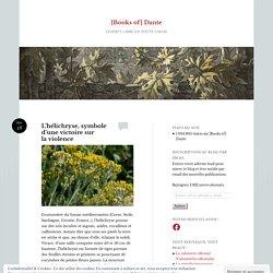 L'hélichryse, symbole d'une victoire sur la violence