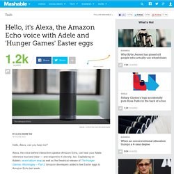 Hello, it's Alexa, the Amazon Echo voice with an Adele Easter egg