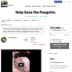 Help Save the Pangolin.