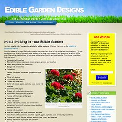 A helpful list of companion plants for edible gardens