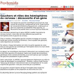 Gauchers et rôles des hémisphères du cerveau : découverte d'un gène