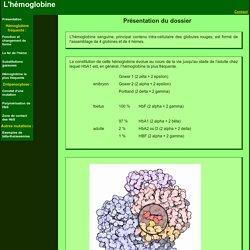 Hémoglobine molec3D A OUVRIR