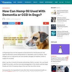 How Can Hemp Oil Used With Dementia or CCD In Dogs?