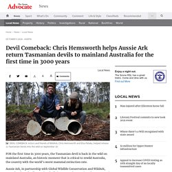 Devil Comeback: Chris Hemsworth helps Aussie Ark return Tasmanian devils to mainland Australia for the first time in 3000 years