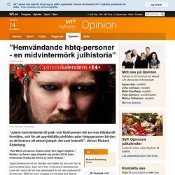 """""""Hemvändande hbtq-personer - en midvintermörk julhistoria"""""""