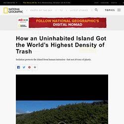 Henderson Island Got the World's Highest Density of Plastic Pollution