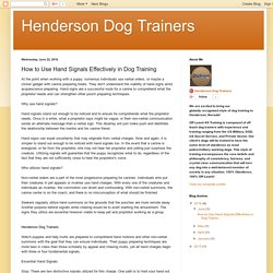 How to Use Hand Signals Effectively in Dog Training