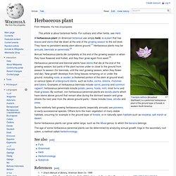 Herbaceous plant