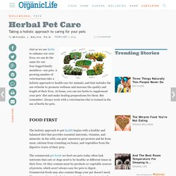 Herbal Pet Care