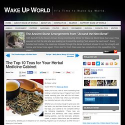 The Top 10 Teas for Your Herbal Medicine Cabinet