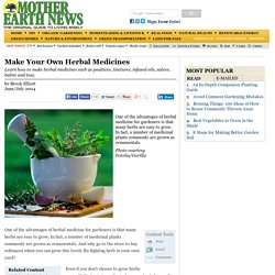 Make Your Own Herbal Medicines - Natural Health