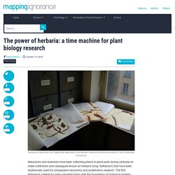 The power of herbaria: a time machine for plant biology research - Mapping Ignorance