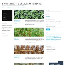 Stories from the St Andrews Herbarium