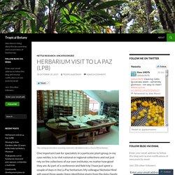 Herbarium visit to La Paz (LPB)