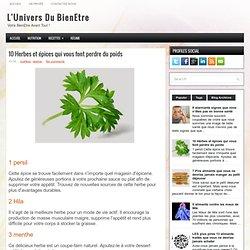 10 Herbes et épices qui vous font perdre du poids ~ L'Univers Du BienEtre