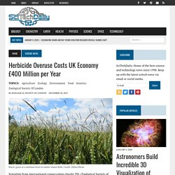SCITECHDAILY 30/12/19 Herbicide Overuse Costs UK Economy £400 Million per Year