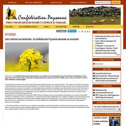 Colza tolérant aux herbicides : la Confédération Paysanne demande un moratoire