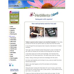 HerbMentor News 92: How to Make Cayenne Salve