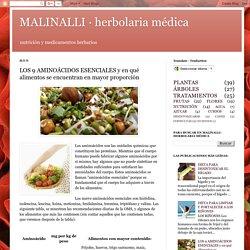 MALINALLI · herbolaria médica: LOS 9 AMINOÁCIDOS ESENCIALES y en qué alimentos se encuentran en mayor proporción