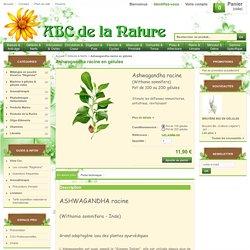 Ashwagandha racine en gélules, herboristerie, phytothérapie..