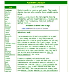 Herbs & Herbal Uses
