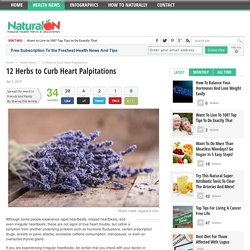 12 Herbs to Curb Heart Palpitations - NaturalON
