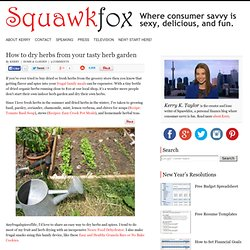 How to dry herbs from your tasty herb garden | Squawkfox