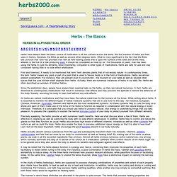 Herbs - The Basics
