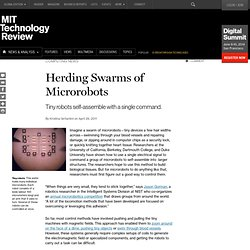 Herding Swarms of Microrobots