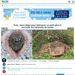 DIY abri pour hérisson - Deux idées faciles pour fabriquer une cabane pour hérisson