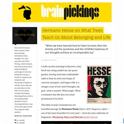 Hermann Hesse on What Trees Teach Us About Belonging and Life