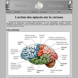 Heroine-Morphine