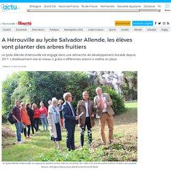 A Hérouville au lycée Salvador Allende, les élèves vont planter des arbres fruitiers