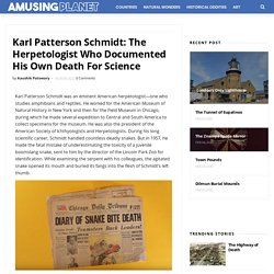 Karl Patterson Schmidt: The Herpetologist Who Documented His Own Death For Sc...