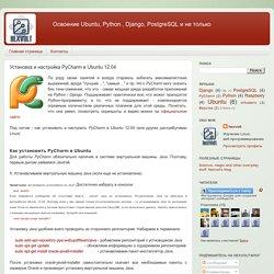Установка и настройка PyCharm в Ubuntu 12.04