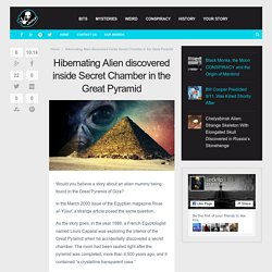 Hibernating Alien discovered inside Secret Chamber in the Great Pyramid –