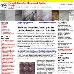 Sisteme de hidroizolatii pentru beci / pivniţă şi subsol / demisol - Fundaţii, Subsoluri, Demisoluri, Beciuri, Pivniţe