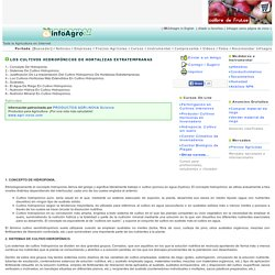 Los cultivos hidropónicos de hortalizas extratempranas.