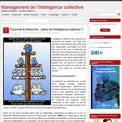 Pyramide & Hiérarchie : piliers de l'intelligence collective ?