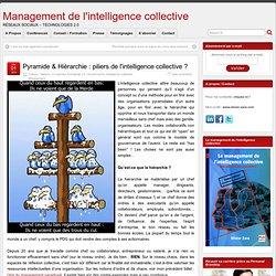 Pyramide & Hiérarchie : piliers de l'intelligence collective ?