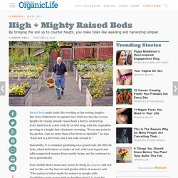 High and Mighty: Raised Beds