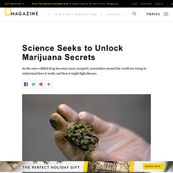 Science Seeks to Unlock Marijuana's Secrets