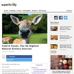 CoQ10 Foods: The 50 Highest Natural Dietary Sources