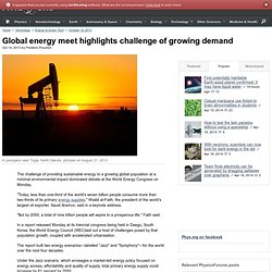 Global energy meet highlights challenge of growing demand