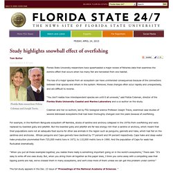Study highlights snowball effect of overfishing / December / 2013 / 24/7 News Archive / More FSU News - Florida State 24/7