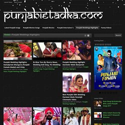 Punjabi Weddings Highlights