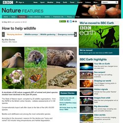 BBC Nature - Wildlife stocktake highlights UK's most threatened species
