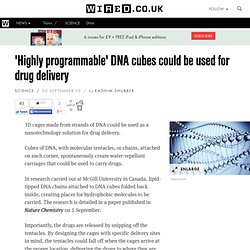 DNA drug delivery