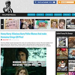 Horny Harry: Hilarious Harry Potter Memes that make Hermoine Cringe (20 Pics)