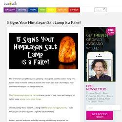 5 Signs Your Himalayan Salt Lamp is a Fake! - David Avocado Wolfe - DavidWolfe.com